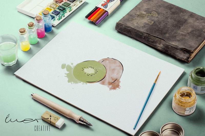 kivi-illustration