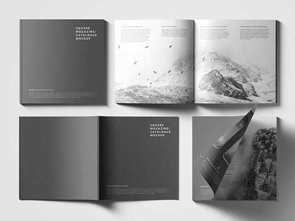 katalog tasarımı örneği