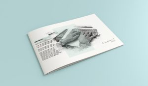 meri-creative-catalog